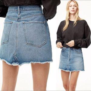 Agolde Distressed Denim Mini Skirt Button Fly